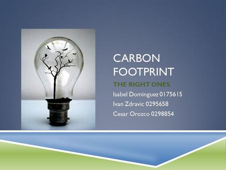 CARBON FOOTPRINT THE RIGHT ONES Isabel Dominguez 0175615 Ivan Zdravic 0295658 Cesar Orozco 0298854.