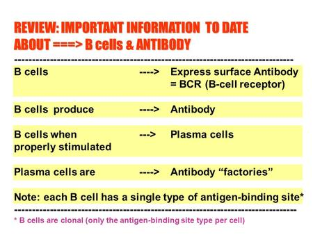 REVIEW: IMPORTANT INFORMATION TO DATE ABOUT ===> B cells ANTIBODY ABOUT ===> B cells & ANTIBODY --------------------------------------------------------------------------------