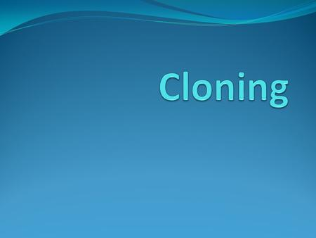 Types of Cloning Reproductive Cloning – making copies of a whole animal/human – useful to propagate transgenic /genetically modified organisms Therapeutic.