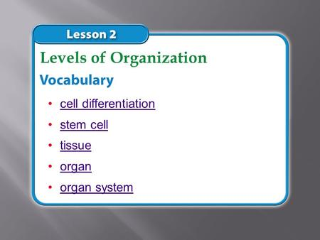 cell differentiation stem cell tissue organ organ system Levels of Organization.