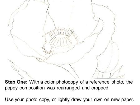Step One: With a color photocopy of a reference photo, the poppy composition was rearranged and cropped. Use your photo copy, or lightly draw your own.
