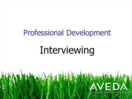 Professional Development Interviewing. Interviewing Skills Making a good 1 st impression is critical to getting that dream job Most important thing is.