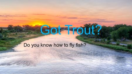 Got Trout? Do you know how to fly fish? Fly fishing on the Big Horn1.