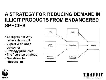 A STRATEGY FOR REDUCING DEMAND IN ILLICIT PRODUCTS FROM ENDANGERED SPECIES Background: Why reduce demand? Expert Workshop outcomes Strategy principles.