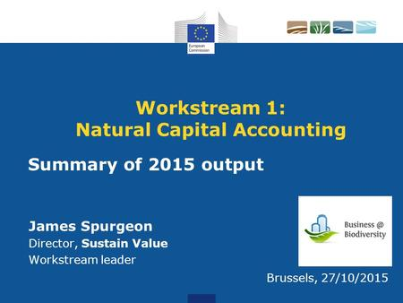 Workstream 1: Natural Capital Accounting James Spurgeon Director, Sustain Value Workstream leader Brussels, 27/10/2015 Summary of 2015 output.