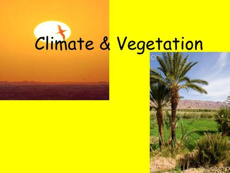 Climate & Vegetation. Water Desert Climate Hot and dry Sahara – largest desert in the world (about 3.5 million sq. miles) Drought has expanded the Sahara.