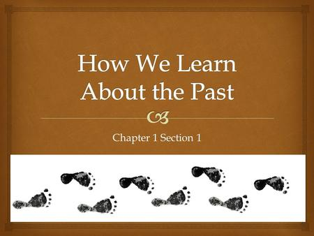 Chapter 1 Section 1.  How do we learn about the past?