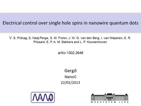 Electrical control over single hole spins in nanowire quantum dots