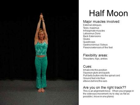 Half Moon Major muscles involved: External obliques Teres maximus Infraspinate muscles Latissimus Dorsi Back Extensions Glutes Quadriceps Gastrocnemius/