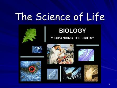 1 The Science of Life. 2 What is Biology? Biology is the study of all living things Living things are called organisms Living things are called organisms.