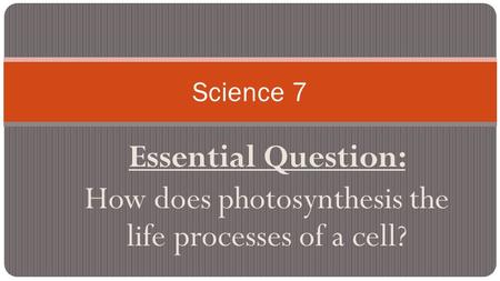 Essential Question: How does photosynthesis the life processes of a cell? Science 7.