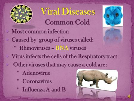 Common Cold M Most common infection C Caused by group of viruses called: * Rhinoviruses – RNA viruses V Virus infects the cells of the Respiratory tract.