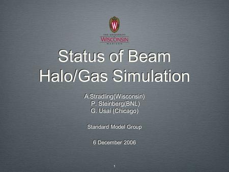 Status of Beam Halo/Gas Simulation A.Stradling(Wisconsin) P. Steinberg(BNL) G. Usai (Chicago) Standard Model Group 6 December 2006 A.Stradling(Wisconsin)