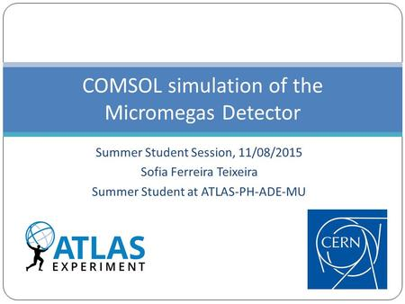 Summer Student Session, 11/08/2015 Sofia Ferreira Teixeira Summer Student at ATLAS-PH-ADE-MU COMSOL simulation of the Micromegas Detector.