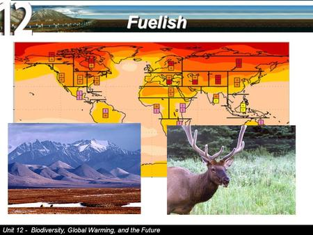Unit 12 - Biodiversity, Global Warming, and the Future FuelishFuelish.