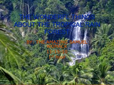 THE WONDERFL THINGS ABOUT THE TROPICAL RAIN FOREST BY: THE AMAZING SAMUEL WOMACK 11-15-10 1 st hour.