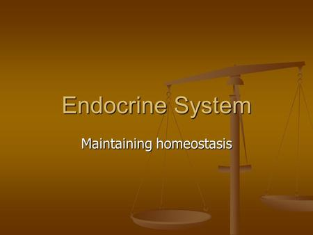 Endocrine System Maintaining homeostasis. The Importance of the Endocrine System The body is composed of trillions of cells The body is composed of trillions.