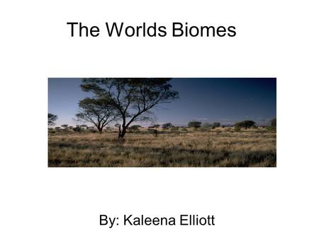 The Worlds Biomes By: Kaleena Elliott. Rainforest Biome Rain forests can be found on almost every continent by the equator. The rainfall is 3 meters per.