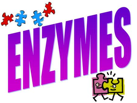 What's an Enzyme? 1.Enzymes are proteins. 2.Enzymes are catalysts. Catalysts speed up chemical reactions End in –ase (Ex: sucrase, catalase) Without.