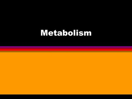 Metabolism. Chapter 5 Metabolism Metabolism = Anabolism + Catabolism Photosynthesis requires Respiration Respiration requires Photosynthesis Energy Production.
