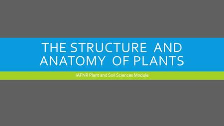 THE STRUCTURE AND ANATOMY OF PLANTS IAFNR Plant and Soil Sciences Module.