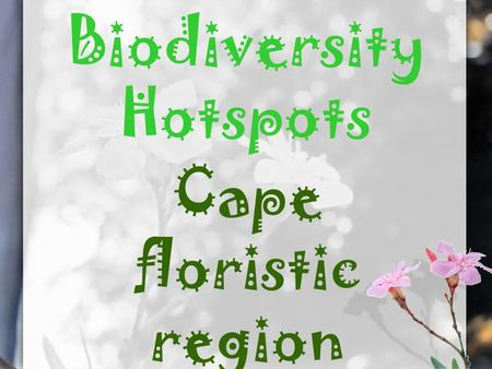 Biodiversity Hotspots Cape floristic region. Background information The cape floristic region is situated on the tip of South Africa, it is one of the.
