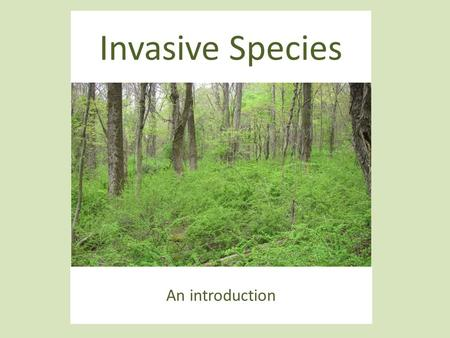 Invasive Species An introduction.