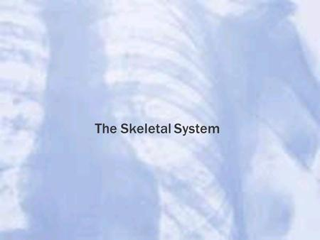 The Skeletal System. Newborn Baby= 350 bones Fusion of bones Mature Adult= 206 bones.