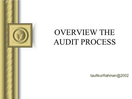 OVERVIEW THE AUDIT PROCESS Overview of the Audit Process.
