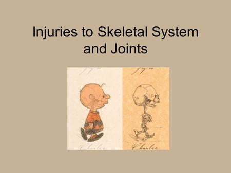 Injuries to Skeletal System and Joints. Classification of Bones Long –femur, humerus Short –carpals, tarsals Flat –frontal, sternum Irregular –vertebral.
