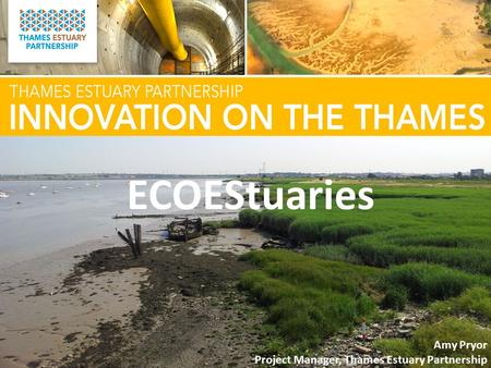 ECOEStuaries Amy Pryor Project Manager, Thames Estuary Partnership.