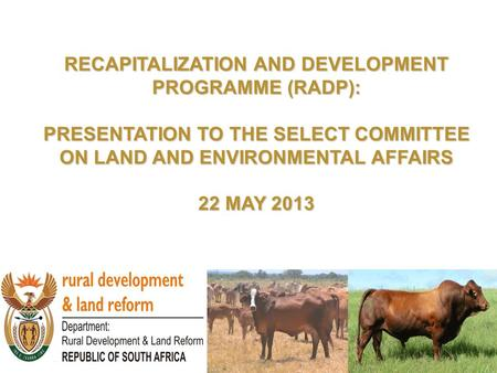 RECAPITALIZATION AND DEVELOPMENT PROGRAMME (RADP): PRESENTATION TO THE SELECT COMMITTEE ON LAND AND ENVIRONMENTAL AFFAIRS 22 MAY 2013.