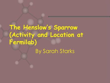 The Henslow's Sparrow (Activity and Location at Fermilab) By Sarah Starks.