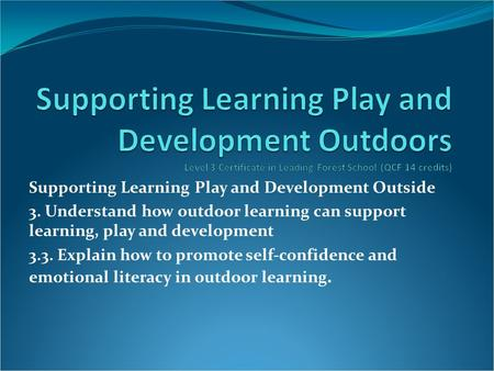Supporting Learning Play and Development Outside 3. Understand how outdoor learning can support learning, play and development 3.3. Explain how to promote.