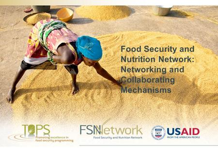 Food Security and Nutrition Network: Networking and Collaborating Mechanisms.