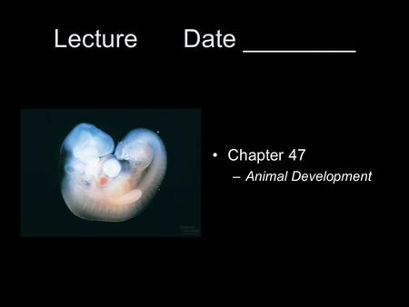 Lecture Date ________ Chapter 47 –Animal Development.