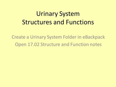 Urinary System Structures and Functions Create a Urinary System Folder in eBackpack Open 17.02 Structure and Function notes.