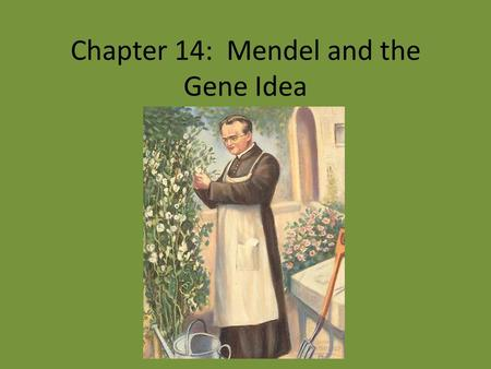 Chapter 14: Mendel and the Gene Idea. Genetic Terminology Character – Trait True-breeding Hybridization – P generation – F 1 generation – F 2 generation.