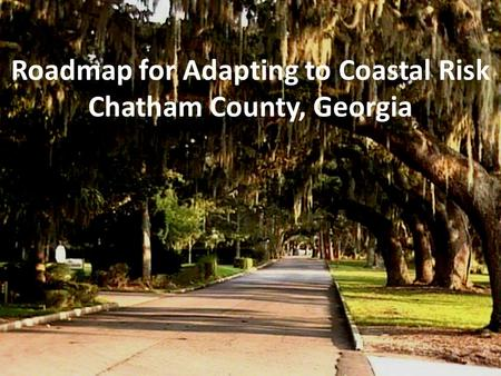 Roadmap for Adapting to Coastal Risk Chatham County, Georgia.