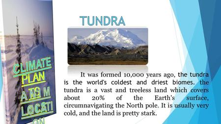 It was formed 10,000 years ago, the tundra is the world's coldest and driest biomes. the tundra is a vast and treeless land which covers about 20% of the.