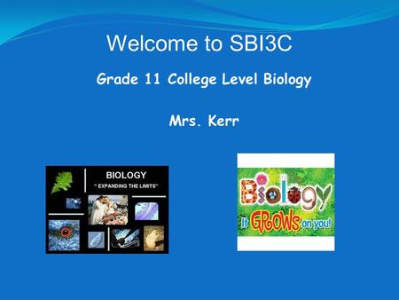 Grade 11 College Level Biology Mrs. Kerr Welcome to SBI3C.