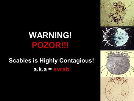 WARNING! POZOR!!! Scabies is Highly Contagious! a.k.a = svrab.