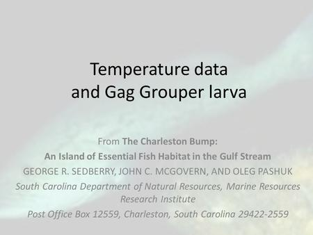 Temperature data and Gag Grouper larva From The Charleston Bump: An Island of Essential Fish Habitat in the Gulf Stream GEORGE R. SEDBERRY, JOHN C. MCGOVERN,
