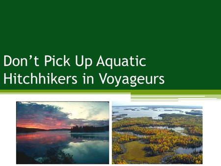 Don't Pick Up Aquatic Hitchhikers in Voyageurs.