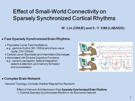Effect of Small-World Connectivity on Sparsely Synchronized Cortical Rhythms W. Lim (DNUE) and S.-Y. KIM (LABASIS)  Fast Sparsely Synchronized Brain Rhythms.