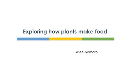 Exploring how plants make food