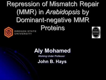 Repression of Mismatch Repair (MMR) in Arabidopsis by Dominant-negative MMR Proteins Aly Mohamed Aly Mohamed Working Under Professor John B. Hays John.