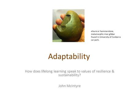 Adaptability How does lifelong learning speak to values of resilience & sustainability? John McIntyre eloura or hammerstone, metamorphic river gibber Found.