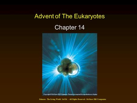 Johnson - The Living World: 3rd Ed. - All Rights Reserved - McGraw Hill Companies Advent of The Eukaryotes Chapter 14 Copyright © McGraw-Hill Companies.