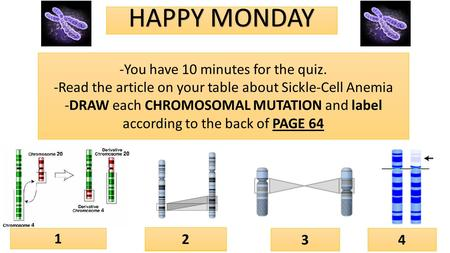 DeletionInversion Duplication Translocation HAPPY MONDAY 1 2 34 -You have 10 minutes for the quiz. -Read the article on your table about Sickle-Cell Anemia.